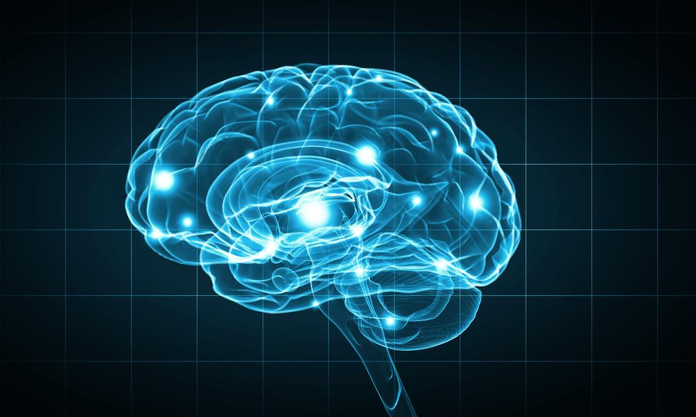brain activties